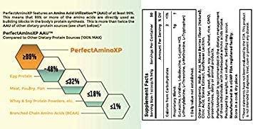 perfect amino xp ingredients